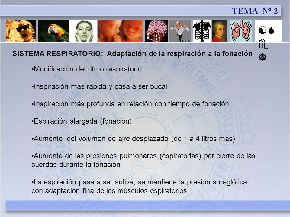 [Se] SISTEMA RESPIRATORIO: Adaptación de la respiración a la fonación